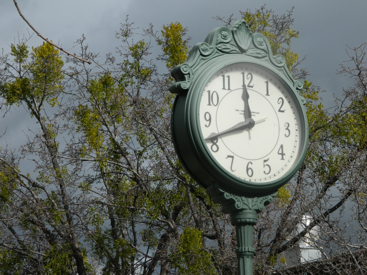 Photo of of the face of an upright clock with trees in the background