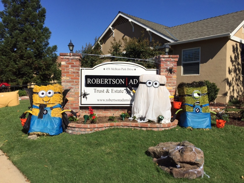 Three minion scarecrows surround the Robertson | Adams sign